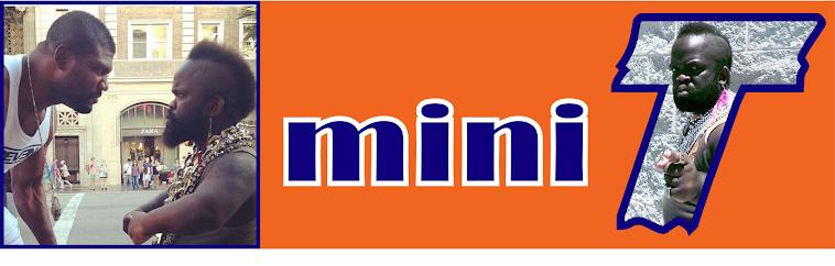 Mini T