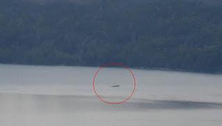 nahuel huapi lake creature