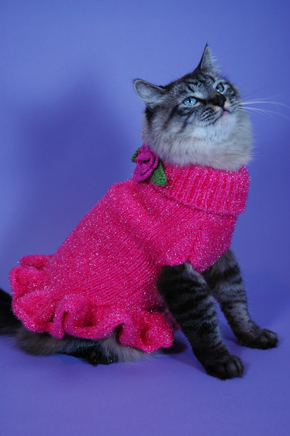 thank you kitty cat sparkles