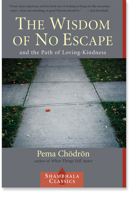 Pema Chodron Quotes Gorgeous Buddhism In The West Pema Chodron Quotes  The Wisdom Of No