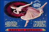 Amina The Airwalker