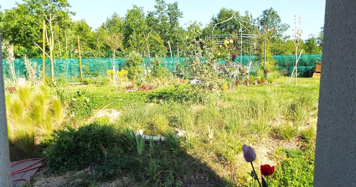 Jardin aux quatre saisons le jardin vu de l 39 int rieur for Alexandre jardin nu