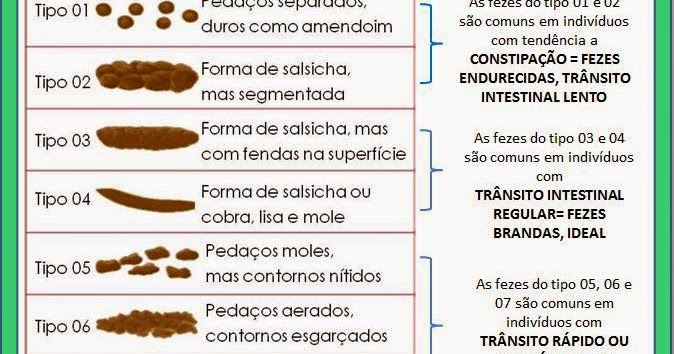 Image Result For Dia Da Alimentacao