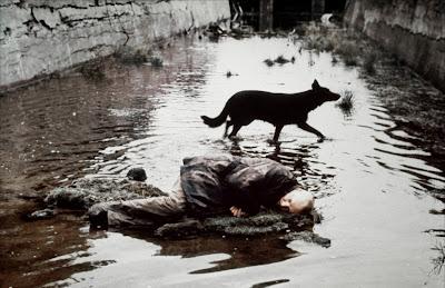 Escena de la película Stalker, donde se ve al protagonista tirado en el rio y un perro negro detrás.