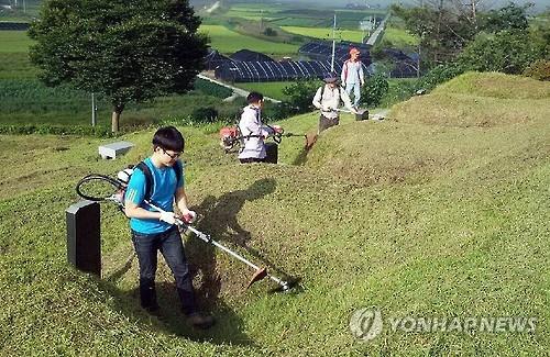 Coreanos limpiando tumbas por Chuseok