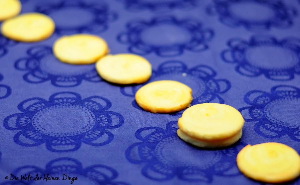 Die Welt der kleinen Dinge: Orangenschnecken
