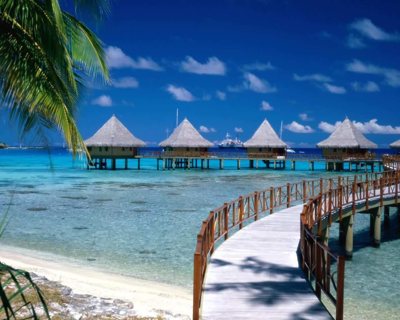 beach scenery background | scenery backgrounds