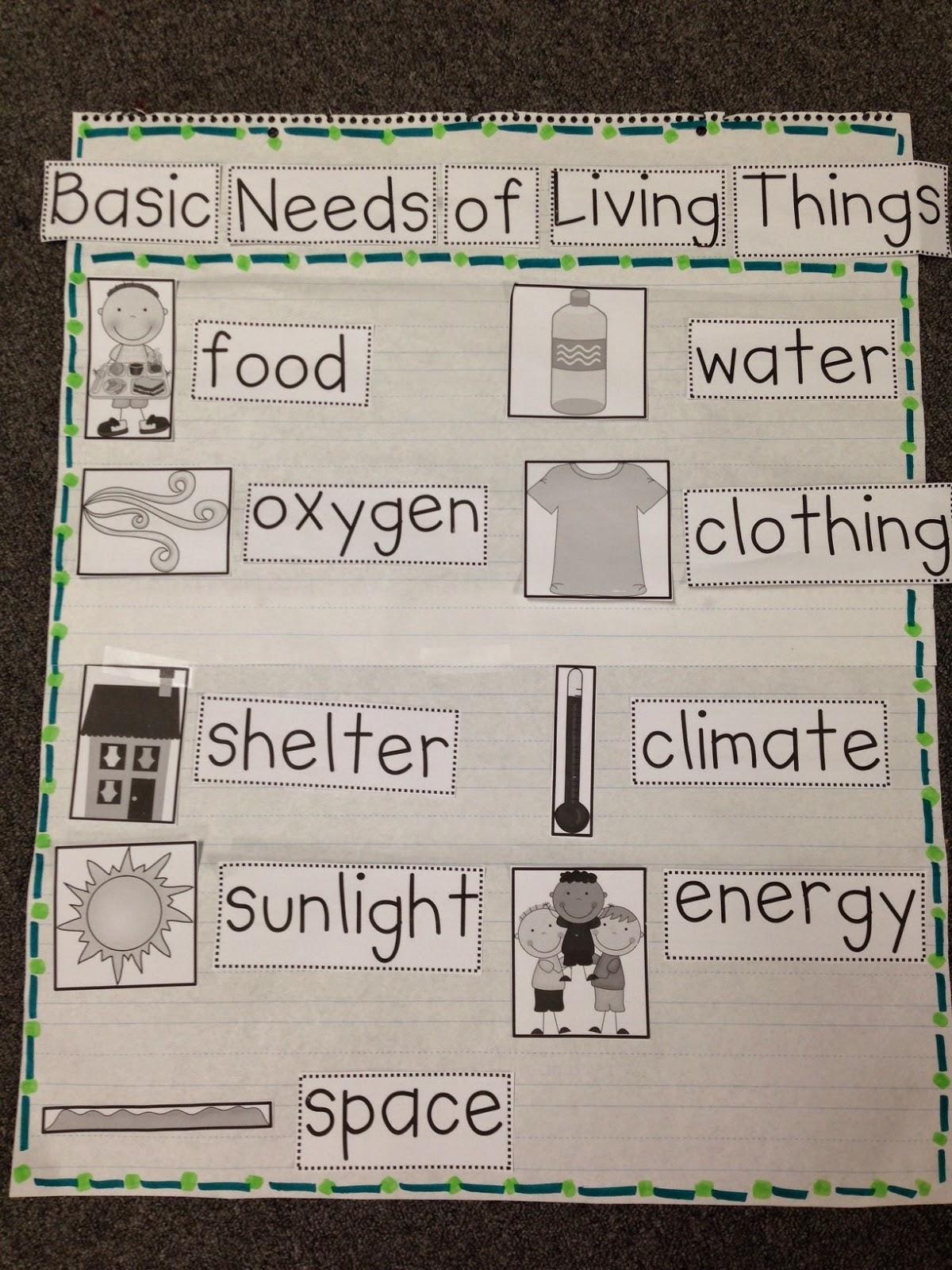 basic needs chalk talk a kindergarten blog bloglovin. Black Bedroom Furniture Sets. Home Design Ideas
