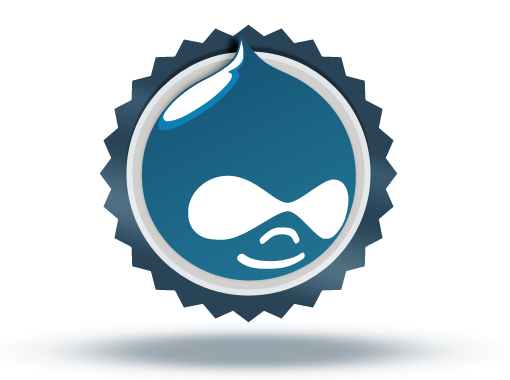 Enterprise Website Problem? Try the Drupal Solution