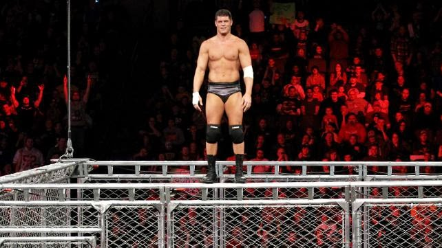 Cody Rhodes Moonsault off Steal Cage