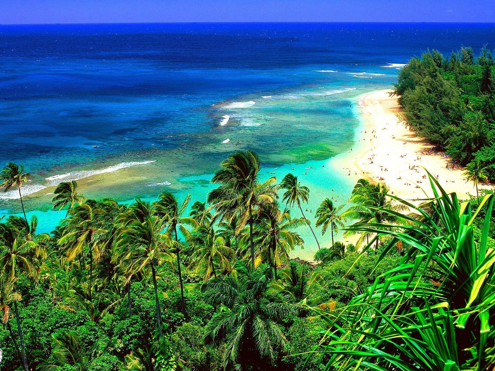 Visita Kauai Hawaii