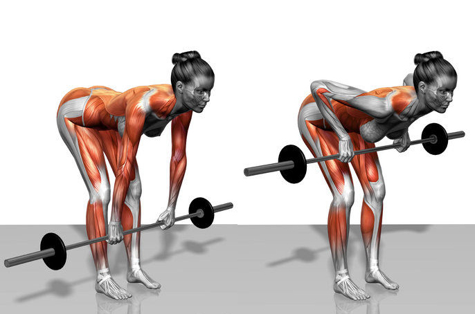 Exercises I dislike - Episode one - The Bent Over Row | Picking ...