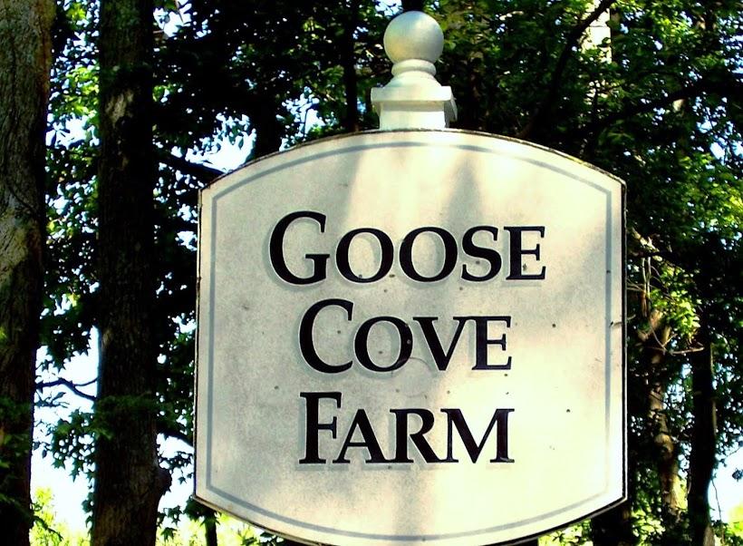 GOOSE COVE