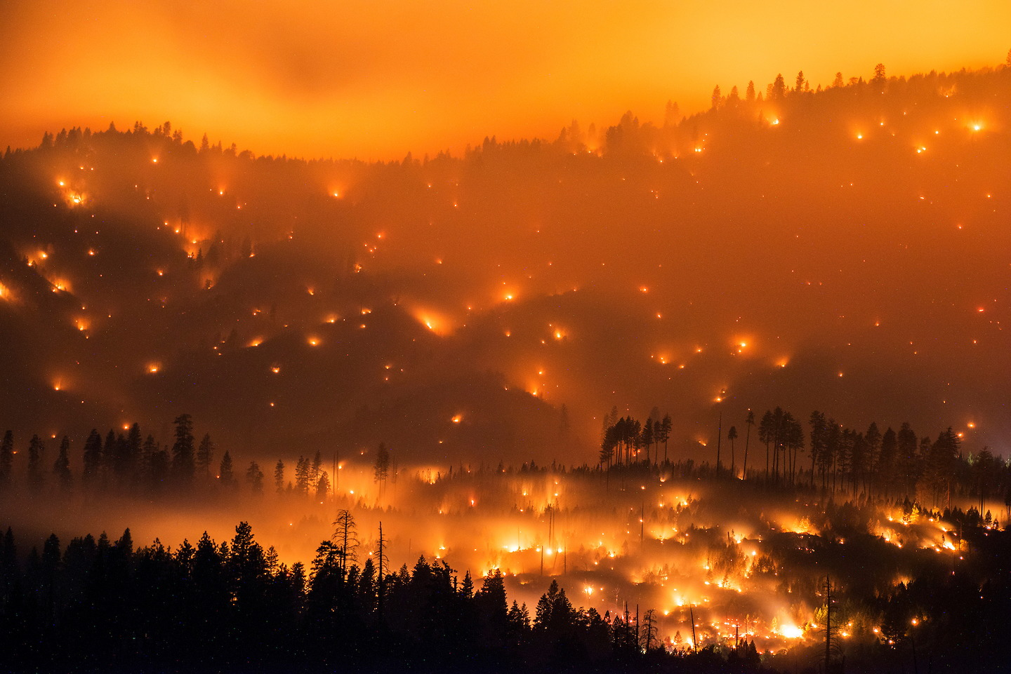 Bensozia stuart palley california wildfires for Beautiful in los angeles