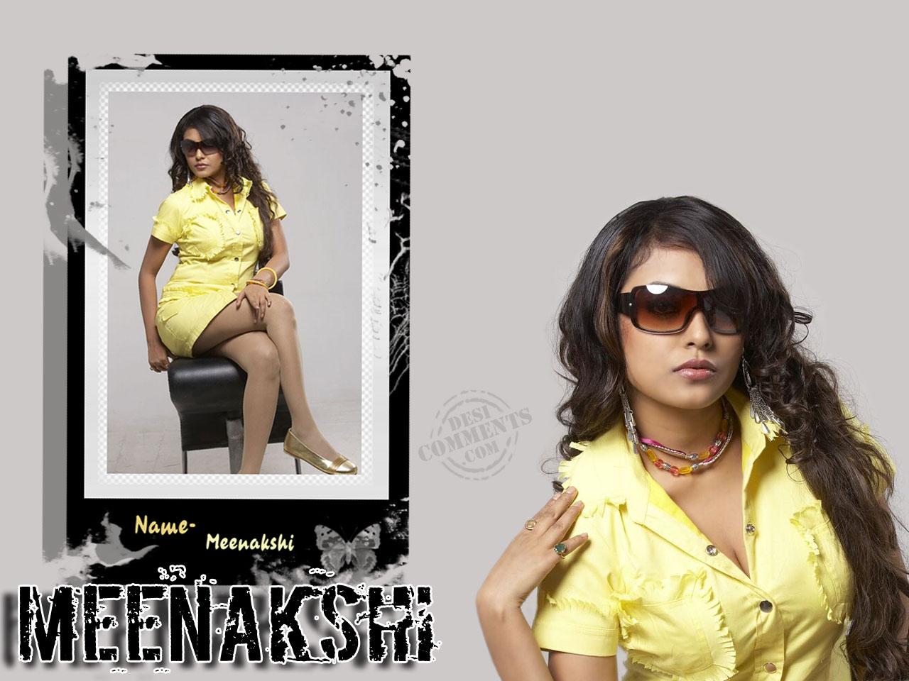 http://1.bp.blogspot.com/-6N8HyvCLraM/TYARy1_n_kI/AAAAAAAAF6o/01dqXoxtbHA/s1600/Meenakshi-Wallpaper-1%255B1%255D.jpg