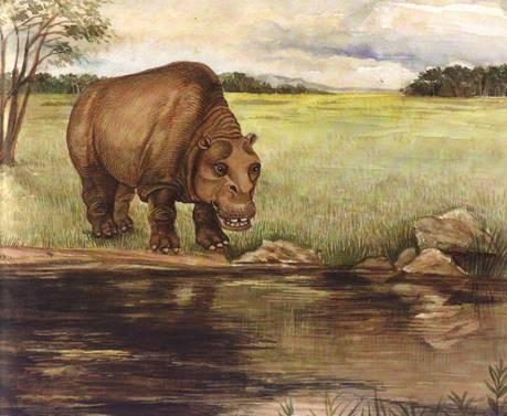 sv mojombo megafauna by nina