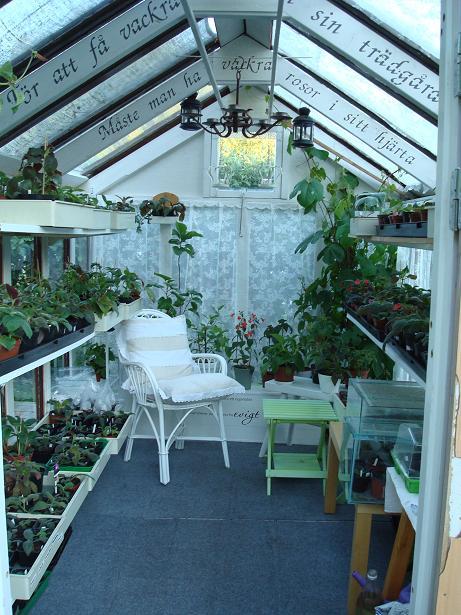 Växthuset 2011