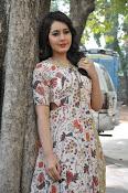 Rashi Khanna at Bengal Tiger event-thumbnail-15