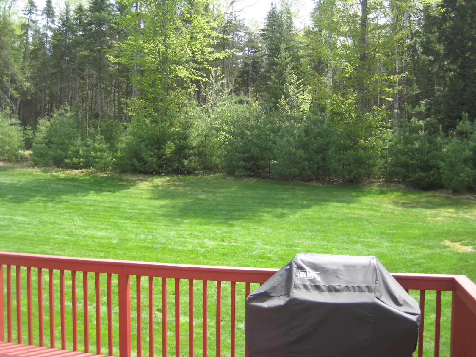 all things beautiful backyard renovations