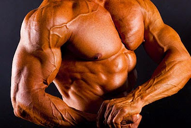 The Top Foods For Building Muscle - How to Become Ripped Quickly