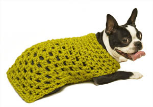 Free Crochet Granny Square Dog Sweater : Miss Julias Patterns: Free Patterns - 30 Going to the ...