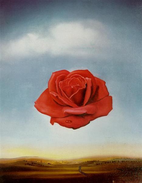 Salvador Dali, Rosa Meditativa, 1958