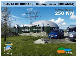 empresa planta de biogas BiODIGESTORES biddinghuizem holanda 250 KW INDEREN ENERGIAS RENOVABLES VALENCIA