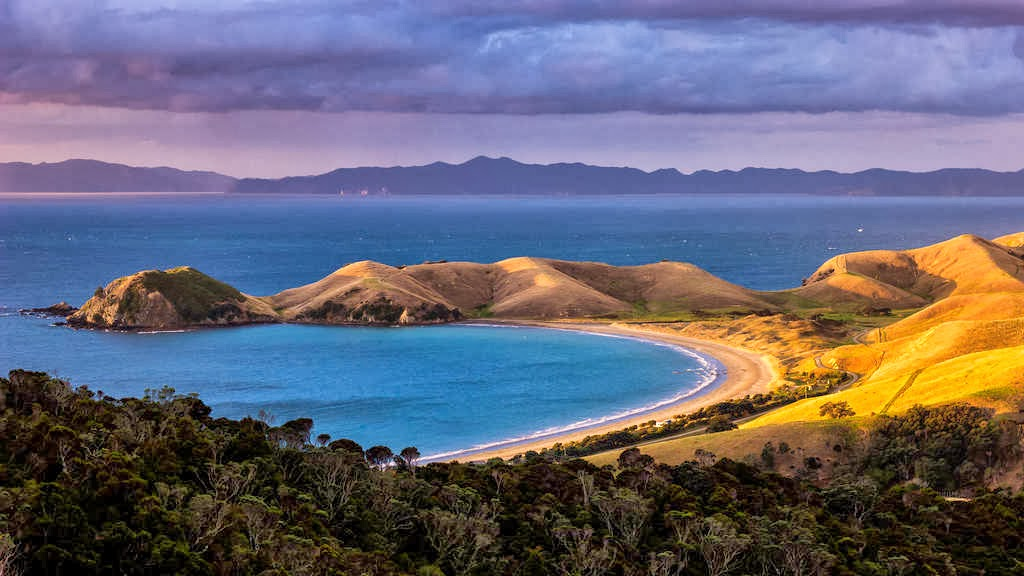 Great Barrier Island New Zealand  City pictures : new zealand has many places to escape relax unwind and great barrier ...