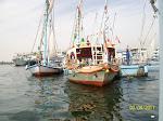 Fan Boats
