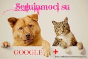 Seguiamoci su Google+