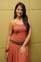 Bollywood and Tollywood acress Cute, sexy Lakshmi Rai, gorgious, curvy, hot, spicy, masala, sizzling image gallery, pic collection