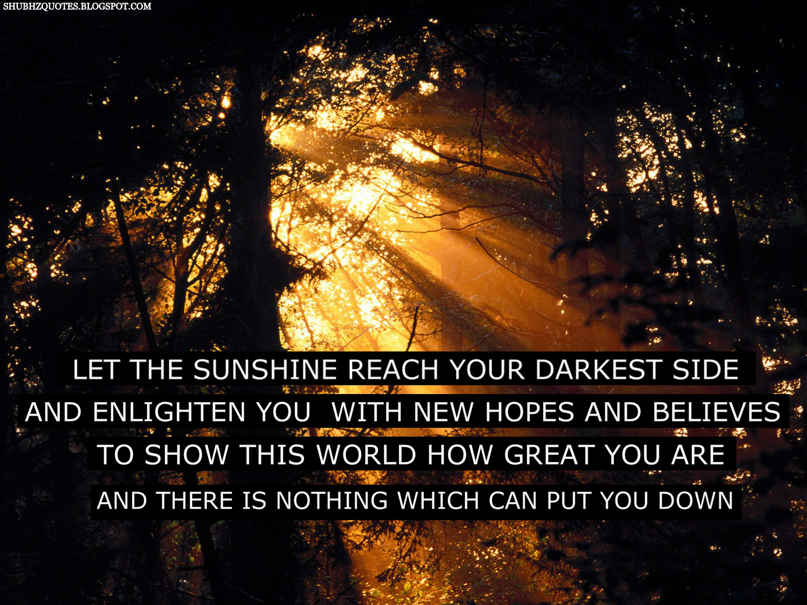 quotes about sunshine - photo #19