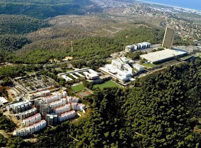 Universidade de Haifa se destaca em pesquisas com o hormônio oxitocina