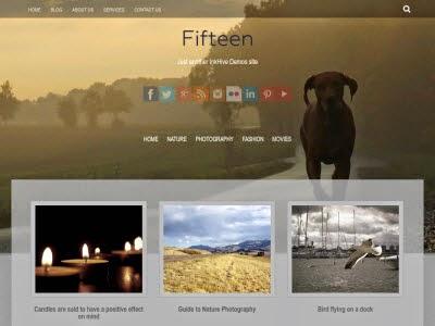 Fifteen WordPress Themes