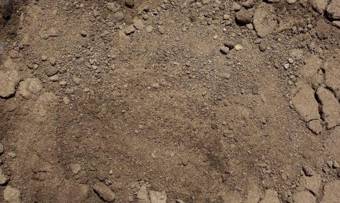 todo biolog a texturas del suelo