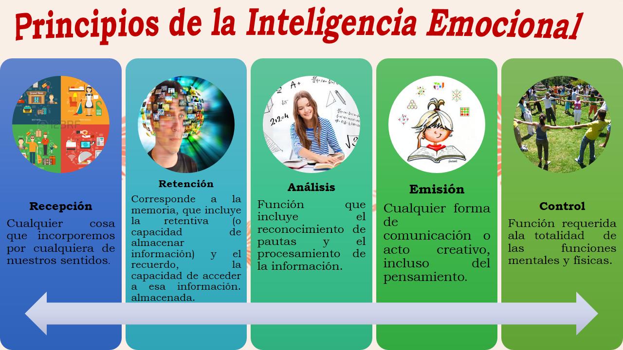 Desarrollo del Pensamiento y la Inteligencia Humana: La ...