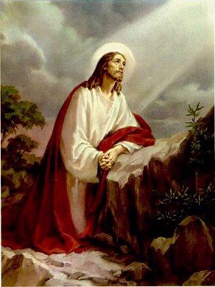 Biblical Reflections For Students John 18 1 19 42 Good Friday Reflection Love Sacrificed On