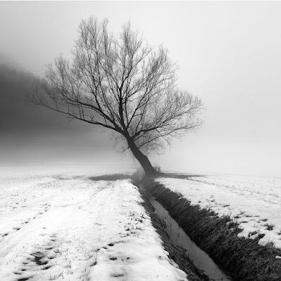 Elemen Komposisi Fotografi : Garis, diagonal