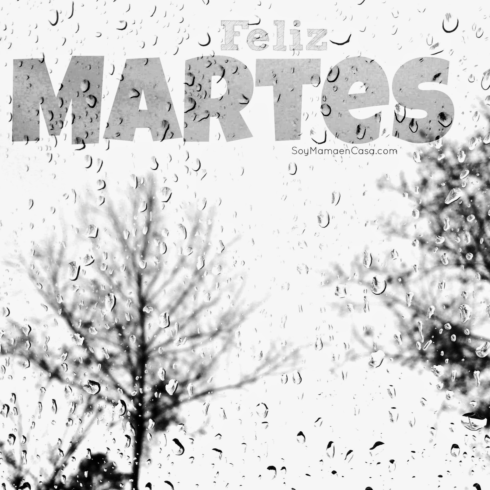 martes, gotas de lluvia, lluvia