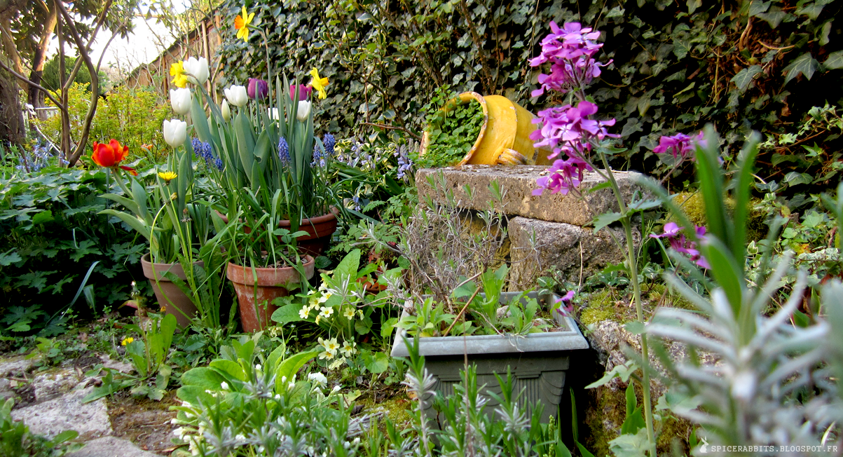 Flower power - Idee petit jardin fleuri brest ...