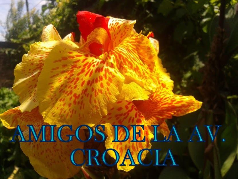 AMIGOS DE LA AV. CROACIA
