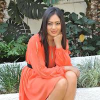 Glamorous Nikeesha patel hot photos in short red dress