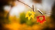 Осень - она придет