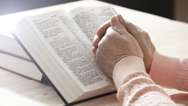 TEM NOVO ESTUDO BÍBLICO
