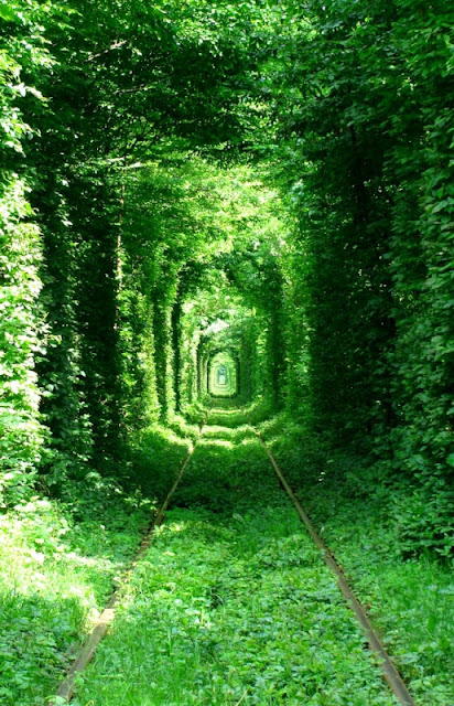Tunnel of Love in Kleven, Ukraine