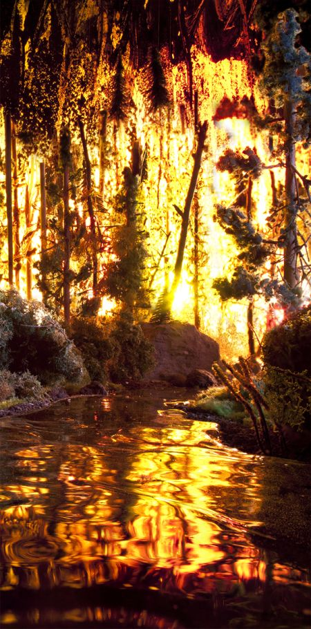 Matthew Albanese fotografia set designer maquetes modelos miniaturas hiper realistas Incêndio na floresta