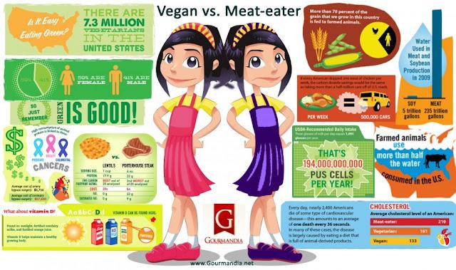 vegan-vs-meateater_inforgraphic-explained