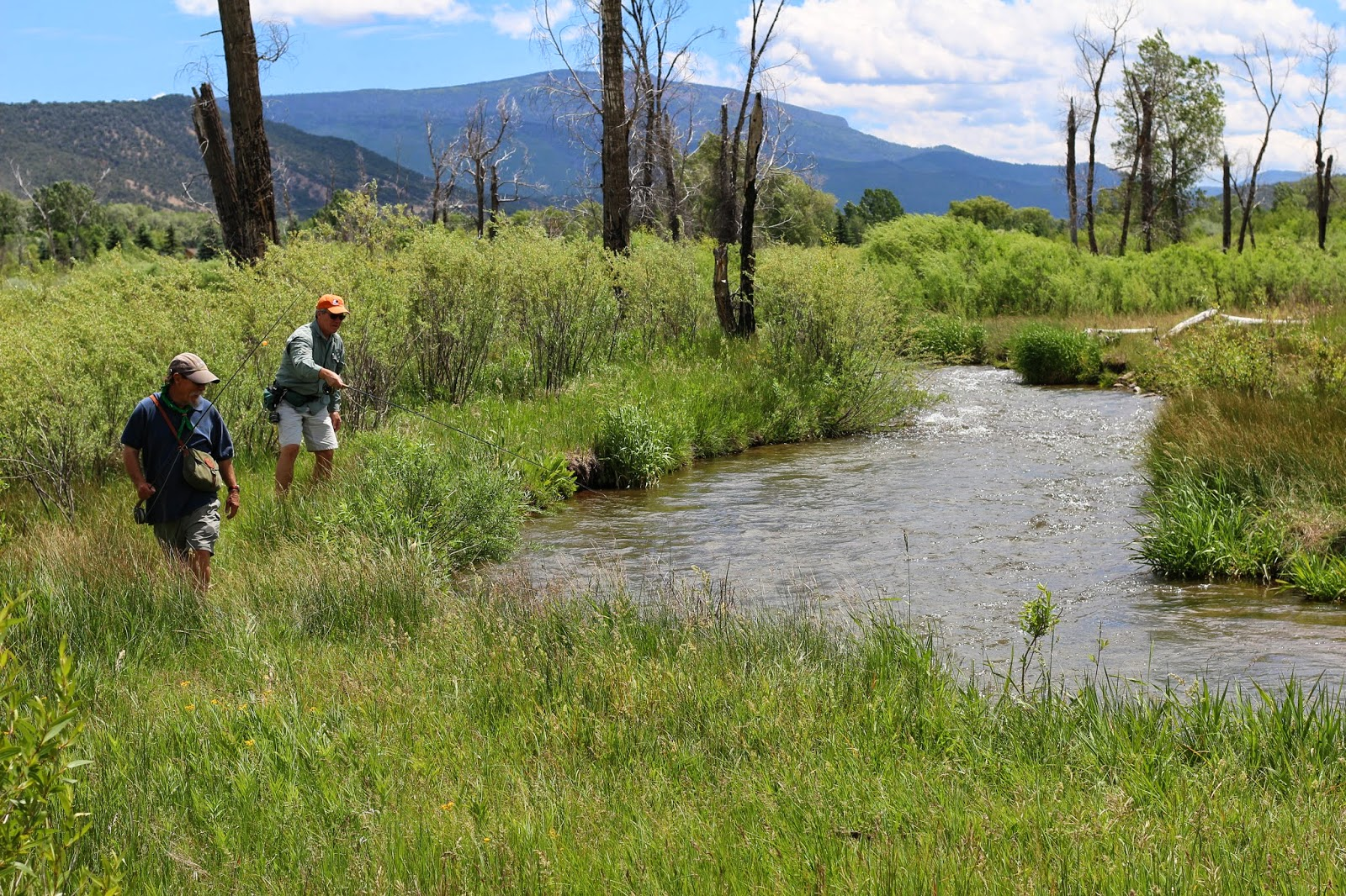 Fly+Fish+for+brown+trout+in+Colorado+with+Jay+Scott+Outdoors+6.JPG