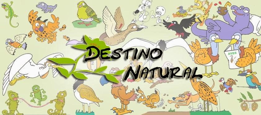 Destino Natural