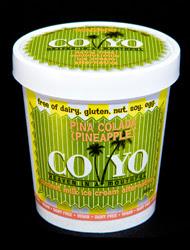 CO YO launches Ice Cream
